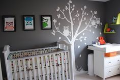 Grey and orange themed nursery with nice white wall decal and cute owl pictures