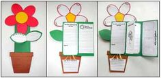 Flower foldable for life cycle of plants unit