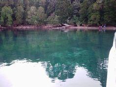 Bosque Los Arrayanes - Bariloche - Argentina - Viagem com Sabor