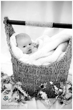 I never would have thought to use the Thirty-One Magazine Basket for baby pictures, I LOVE IT!