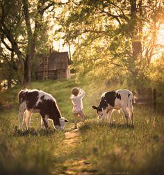 Photo ..morning at the farm.. by Elena Shumilova on 500px