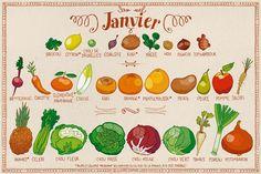 Calendrier du mois de Janvier | pissenlit