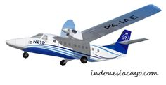 N219 pesawat kebanggan indonesia