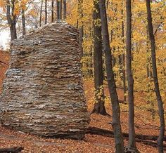 Steven Siegel is a New York based artist noted for creating large boulders/sculptures from recycled and found materials - newspapers, branches, tree trunks, aluminum cans, and plastic bottles.