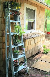 The Chicken Chick: Recycled Ladder turned Planter.