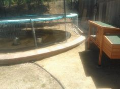 Double-up on space - Trampoline and Chicken Run!