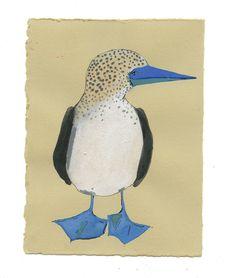 Blue-Footed Booby by Elizabeth Graeber