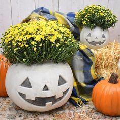 DIY Cement Pumpkin Planter for Halloween ⋆ Dream a Little Bigger Cement Planters, Planter Pots, Fall Crafts, Diy Crafts, How To Clean Chrome, Pumpkin Planter, Cement Walls, Plastic Pumpkins, Crochet Beanie Pattern