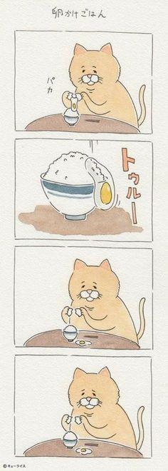 Sad Cat Comp