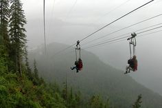 DO:  World's longest zipline in Alaska, this was not there when I lived in Alaska or I would have done that!