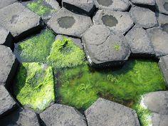 """""""Дорога гигантов""""   Эта интереснейшая местность носит название """"Дорога Гигантов"""", или """"Тропа Великана"""" и находится в Северной Ирландии. Здесь более 40 тысяч объединенных между собой шестигранных базальтовых колонн образуют нечто похожее на дорогу. Самая высокая колонна высотой около 12 метров. Эти причудливые каменные столбы образовались 50-60 миллионов лет назад, когда при извержении вулкана раскаленная и очень жидкая базальтовая лава прорвалась на поверхность прямо в русле существовавшей…"""