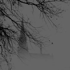 Steeple in the mist