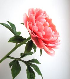 """Пион ручной работы. Полимерная глина .Олеся Галущенко""""Natural flowers"""""""