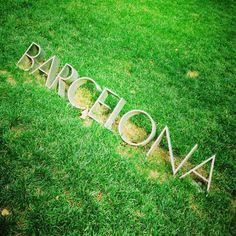 #casasoleada #barcelona #spain #maresme #catalonia #catalunya #bedandbreakfast #summer #beach #holiday #sun #sunset #santvicencdemontalt #vacation #holidaymood #lazy#party #travel #tourist #green