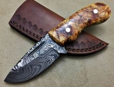 Damascus Steel Hunting Knife Burl Wood -7684