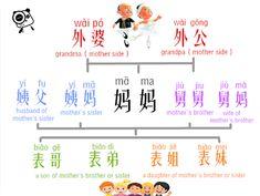 Chinese relatives, immediate family | vocabulary #chinese #mandarin #language