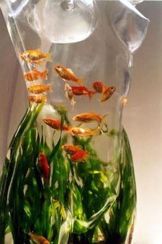 cool fish bowl. ;)