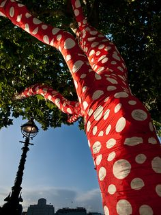 Red and white polka dot wrapped tree in London.