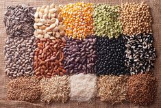 93 Percent of the World's Seeds Have Been Lost in the Last 80 Years - See more at: http://healthimpactnews.com/2015/93-percent-of-the-worlds-seeds-have-been-lost-in-the-last-80-years/#sthash.iXsUtMe7.dpuf