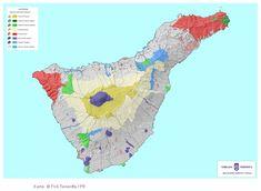 Teneriffa und die Vulkane - 7 ultimative To Do Tipps