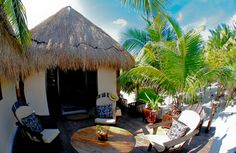 Wonderful place to stay! casa elo tulum, house for rent in tulum mexico