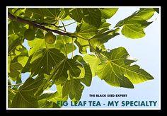 $15.95 - These organic leaves are wonderful and the best I have ever seen. Nothing can compare. Comes in a zipper bag.