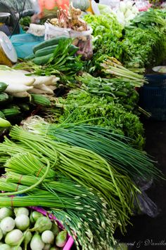 Markt in Chiang Mai Thailand: Kräuter by Coconut & Vanilla Chiang Mai Thailand, Cabbage, Vanilla, Coconut, Herbs, Vegetables, Tips, Veggies, Cabbages