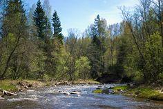 The River Amata.