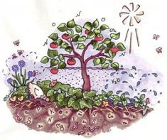 Create your own forest garden with these 5 plants:  Apple Tree, Red Clover: The Nitrogen Fixer, Chives for pests, Keep Out Weeds with Comfrey, Wild Yam Adds a Vertical Layer
