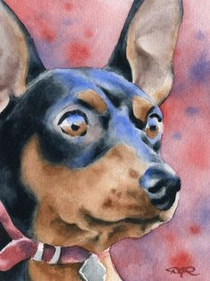 MINIATURE PINSCHER Dog Watercolor Art Print Signed by Artist DJ Rogers via Etsy