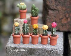 Amigurumi Cactus Tejido A Crochet Regalo Original : Muñecos tejidos crochet amigurumi un regalo original