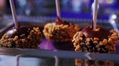 No-Bake Peanut Butter Cheesecake Pops Recipe : Damaris Phillips : Food Network Cheesecake Pops, Peanut Butter Cheesecake, Cheesecake Recipes, Brownie Recipes, No Cook Desserts, Dessert Recipes, Fancy Desserts, Southern At Heart Recipes, Food Network Recipes