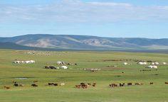 Distese a rischio desertificazione. Il Moia interviene con efficacia