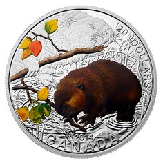 1 oz. Fine Silver Coin - Baby Beaver - Mintage: 7,500 (2014)