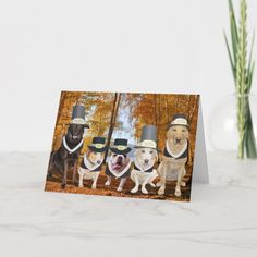 Customizable Funny Dog Pilgrims Thanksgiving Card | Zazzle.com