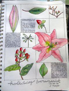 from my sketchbook ~ flowers by janelafazio, via Flickr