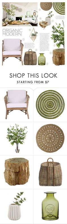 """Organic Modern"" by c-silla ❤ liked on Polyvore featuring interior, interiors, interior design, home, home decor, interior decorating, Dot & Bo, Pier 1 Imports, Diane James and Serena & Lily"
