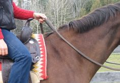 Teaching Your Horse to Neck Rein