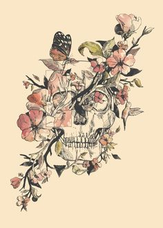 animal skull watercolor - Google Search