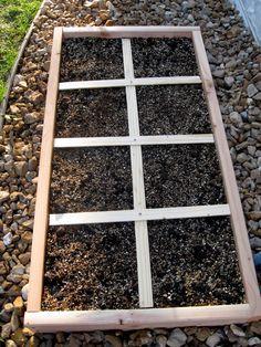 New Nostalgia: Square Foot Gardening