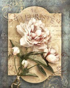 Art Print: Le Fleuriste by Conrad Knutsen : Decoupage Vintage, Vintage Diy, Vintage Labels, Vintage Ephemera, Vintage Cards, Vintage Paper, Vintage Postcards, Art Floral, Floral Prints