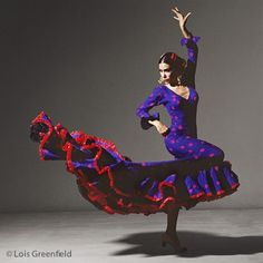 Via Lois Greenfield Photography : Dance Photography : Benitez Teatro Flamenco