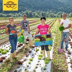 Auch Obst & Gemüse #Robitsch 🥗 feierte #80 #Jahre #Wienerroither gemeinsam mit uns und unseren Gästen. Ein großes Dankeschön 🙏🏻 für's Mitmachen und all die Frische und Buntheit, die Ihr in die #Backstube gebracht habt. 🍓🍊🍒🍐🍎 #maguat (mw7) #wienerroither #wienerroither80 #partner #danke #lieferant #regional #ausderregion #frisch #obst #gemüse #anbau #feld #salat #geburtstag #geschenk #bäckerei #instafood #instagram #foodporn #salad #green #kärnten #carinthia