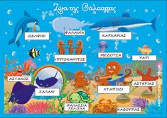 """ΠΕΡΙ... ΝΗΠΙΑΓΩΓΩΝ"" Greek Sea, Learn Greek, Summer Crafts, Summer Activities, Animals Sea, Seasons, Education, School, Chain"