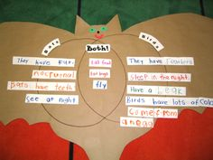 Bat vs. Bird Venn Diagram; use with Book, Stellaluna (from Kinder by Kim)