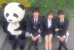 Cafe Panda Hedgehog ♥ Starring: Lee Donghae as Go Seung-ji ♥ Yoon Seung-ah as Pan Da-yang ♥ Choi Jin-hyuk as Choi Won-il