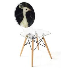 Graph Chair - White Peacock Hen with wooden legs – Fabulous and Baroque White Peacock, Papasan Chair, Acrylic Frames, Wooden Leg, Upholstered Dining Chairs, Furniture Chairs, Barrel Chair, Animal Fashion, Club Chairs