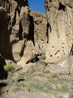 The amazing Mojave Desert.