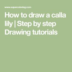 How to draw a calla lily | Step by step Drawing tutorials
