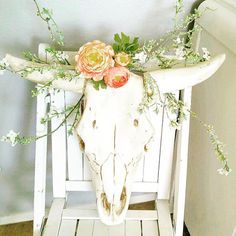 """When your crafty ass sister shares her newest creation and you realize you absolutely ""need"" a cow skull with flowers in its hair. Happy Moo-nday. I…"""